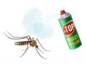 نصيحة من شركة مكافحة حشرات بتبوك