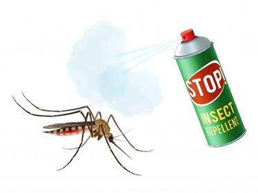 شركة مكافحة حشرات بتبوك ،رش حشرات بتبوك ،مكافحة الحشرات بتبوك